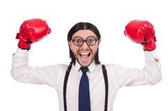 Αστείος νέος επιχειρηματίας με τα εγκιβωτίζοντας γάντια Στοκ εικόνες με δικαίωμα ελεύθερης χρήσης