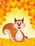 αστείος σκίουρος Στοκ Φωτογραφίες