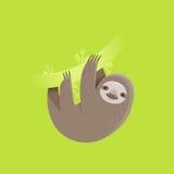 Αστείος χαρακτήρας νωθρότητας που χαμογελά και που κρεμά σε έναν κλάδο δέντρων Στοκ Εικόνες