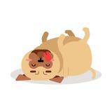 Αστείος χαρακτήρας σκυλιών μαλαγμένου πηλού που βρίσκεται στην πίσω διανυσματική απεικόνισή του Στοκ φωτογραφία με δικαίωμα ελεύθερης χρήσης