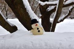 Αστείος χιονάνθρωπος παιχνιδιών που στέκεται κάτω από ένα δέντρο στοκ εικόνες