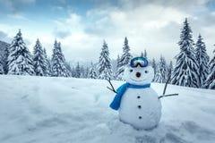 Αστείος χιονάνθρωπος στο γυαλί σκι Στοκ φωτογραφίες με δικαίωμα ελεύθερης χρήσης