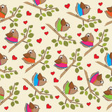 Αστείο άνευ ραφής σχέδιο με τα ντυμένα πουλιά Στοκ Φωτογραφίες