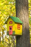 Αστείο ζωηρόχρωμο birdhouse Στοκ Εικόνες