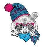 Αστείο καπέλο, μαντίλι και γυαλιά ρακούν Στοκ Εικόνα
