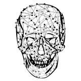 Αστείο κρανίο σκελετών Στοκ Εικόνες