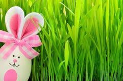 Αστείο λαγουδάκι Πάσχας στην πράσινη χλόη με το αυγό Πάσχας χρωματισμένο ανασκόπηση Πάσχας αυγών eps8 διάνυσμα τουλιπών μορφής κό Στοκ Φωτογραφίες