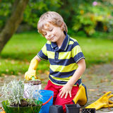 Αστείο μικρό παιδί που καλλιεργεί και που φυτεύει τα λουλούδια στον εγχώριο κήπο Στοκ Φωτογραφία