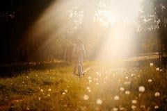 Αστείο οδηγώντας ποδήλατο κοριτσιών υπαίθριο Ηλιόλουστη έννοια θερινού τρόπου ζωής Γυναίκα στο φόρεμα και καπέλο στον τομέα με τι Στοκ Φωτογραφίες