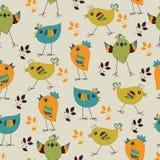 αστείο πρότυπο πουλιών άν&epsil Στοκ φωτογραφία με δικαίωμα ελεύθερης χρήσης