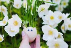 Αστείο ρύγχος eggshell και της χλόης στοκ φωτογραφία με δικαίωμα ελεύθερης χρήσης