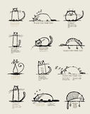 Αστείο σκίτσο γατών, σχέδιο με τη θέση για το κείμενό σας Στοκ Εικόνες