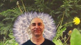 Αστείο του φαλακρού ατόμου σε ένα κλίμα μιας πικραλίδας φιλμ μικρού μήκους
