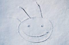 αστείο χιόνι χαμόγελου στοκ εικόνες