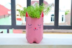 Αστείο flowerpot στο μπαλκόνι Στοκ εικόνα με δικαίωμα ελεύθερης χρήσης