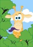 αστείο giraffe διάνυσμα Στοκ Εικόνες