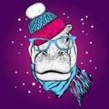 Αστείο hippopotamus σε ένα χειμερινά καπέλο και ένα μαντίλι Διανυσματική απεικόνιση για μια κάρτα, Στοκ εικόνα με δικαίωμα ελεύθερης χρήσης