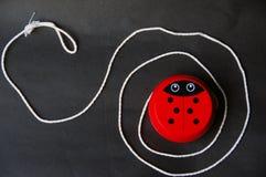 Αστείο ladybug ΙΙ στοκ φωτογραφίες