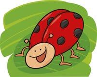 αστείο ladybug Στοκ φωτογραφίες με δικαίωμα ελεύθερης χρήσης