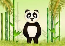 αστείο panda Στοκ Φωτογραφία