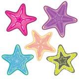 αστερίες Στοκ φωτογραφία με δικαίωμα ελεύθερης χρήσης