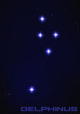 Αστερισμός Delphinus Στοκ Φωτογραφίες