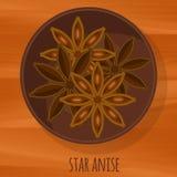 Αστεριών διανυσματικό εικονίδιο σχεδίου γλυκάνισου επίπεδο Στοκ Εικόνα