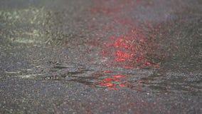 Αστικές λακκούβες οδών, δυνατή βροχή απόθεμα βίντεο