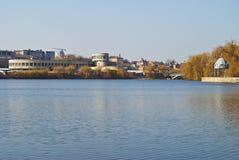 Αστική λίμνη με seagulls Στοκ Εικόνες