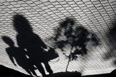 Αστική φύτευση δέντρων Στοκ εικόνες με δικαίωμα ελεύθερης χρήσης