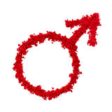 Αστρολογικό σύμβολο του Άρη Στοκ Εικόνες