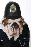 Αστυνομία ή catcher σκυλιών Στοκ Εικόνα