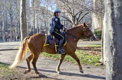 Αστυνομία πόλεων της Νέας Υόρκης Στοκ Εικόνα