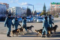 Αστυνομικοί με τα σκυλιά υπηρεσιών Στοκ Φωτογραφίες