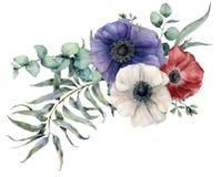 Ασυμμετρική ανθοδέσμη anemone Watercolor Το χέρι χρωμάτισε τα κόκκινα, μπλε και άσπρα λουλούδια, τα φύλλα ευκαλύπτων και τον κλάδ διανυσματική απεικόνιση