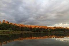 Ασυνήθιστα χρώματα στη δασική λίμνη Στοκ φωτογραφία με δικαίωμα ελεύθερης χρήσης
