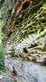 Ασυνήθιστος σχηματισμός βράχου ασβεστόλιθων στο εθνικό δρυμός της Shawnee Στοκ φωτογραφίες με δικαίωμα ελεύθερης χρήσης