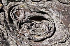 Ασυνήθιστος σχηματισμός βράχου στον κήπο των Θεών, τσερόκι εθνικό δρυμός, IL Στοκ Εικόνες