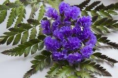 Ασυνήθιστο μπουκέτο των πορφυρών λουλουδιών Στοκ φωτογραφία με δικαίωμα ελεύθερης χρήσης