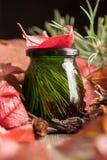 Ασυνήθιστο πράσινο μέλι σε ένα υπόβαθρο του φωτεινού φυλλώματος φθινοπώρου φρέσκο εύγευστο ιατρικό μέλι κέδρων Στοκ Εικόνες