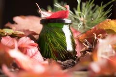 Ασυνήθιστο πράσινο μέλι σε ένα υπόβαθρο του φωτεινού φυλλώματος φθινοπώρου φρέσκο εύγευστο ιατρικό μέλι κέδρων Στοκ Εικόνα