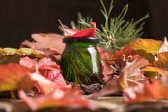 Ασυνήθιστο πράσινο μέλι σε ένα υπόβαθρο του φωτεινού φυλλώματος φθινοπώρου φρέσκο εύγευστο ιατρικό μέλι κέδρων Στοκ φωτογραφίες με δικαίωμα ελεύθερης χρήσης