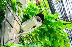 ασφάλεια αφθονίας φωτογραφικών μηχανών copyspace στοκ εικόνες