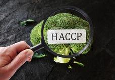 Ασφάλεια των τροφίμων HACCP στοκ εικόνες με δικαίωμα ελεύθερης χρήσης