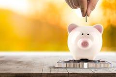 Ασφαλής τράπεζα χρημάτων για την επένδυση με τη piggy τράπεζά σας Στοκ Εικόνες