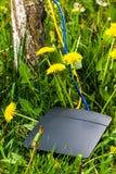 Ασύρματος δρομολογητής, κίτρινα και μπλε καλώδια ethernet Στοκ Φωτογραφίες