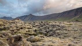 Ατέρμονοι τομείς λάβας στην Ισλανδία με τα βουνά Στοκ φωτογραφία με δικαίωμα ελεύθερης χρήσης