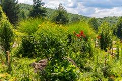 Ατελείωτα μεγαλοπρεπή βουνά ουρανού και ένα μέτριο κρεβάτι λουλουδιών με τα λουλούδια Στοκ εικόνα με δικαίωμα ελεύθερης χρήσης