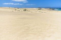 Ατελείωτοι και ευρείς αμμόλοφοι άμμου, Dunas de Corralejo, Fuerteventura Στοκ Εικόνες