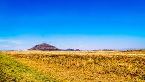 Ατελείωτο ευρύ ανοικτό τοπίο της ημι περιοχής Karoo ερήμων στο ελεύθερο κράτος και το ανατολικό ακρωτήριο Στοκ Εικόνες